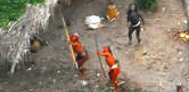 Illegal logging in Peru forces uncontacted indigenous group into Brazil