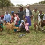 Global Activism: Project Harambee helps families affected by HIV