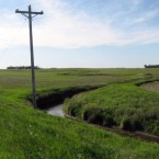 Grass strips alongside streams, like this one in the Lac qui Parle River watershed of Minnesota, can help to reduce fertilizer runoff from fields.