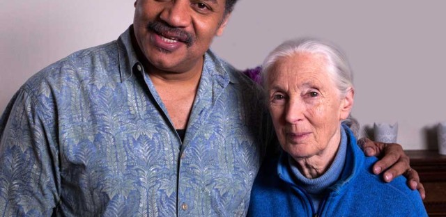 StarTalk Radio : Into the Wild, with Jane Goodall Image