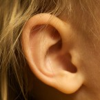 Scientists Say They Have a New Cure for Hearing Loss