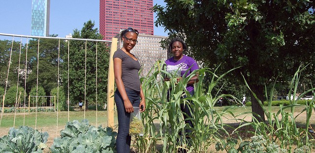 Sisters Dejdrea and Deja Baines with broom corn at Art on the Farm