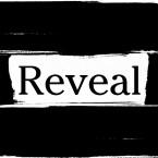 Reveal logo