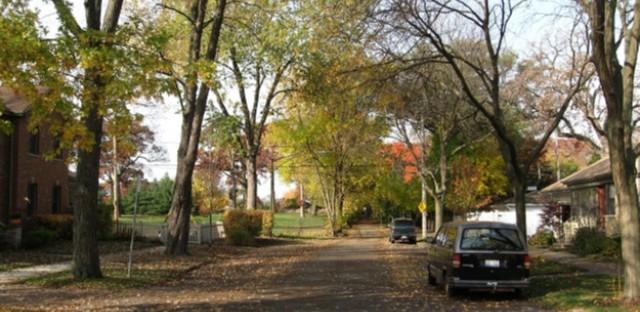 Van Schaik Avenue