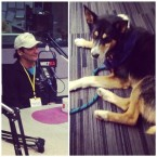Most traveled dog in sled dog history, Walter Payton, in studio