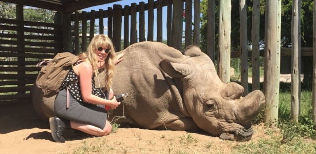 """Britt Wray met the last male northern white rhino, named Sudan, while researching her book, """"Rise of the Necrofauna."""" Sudan died in 2018."""