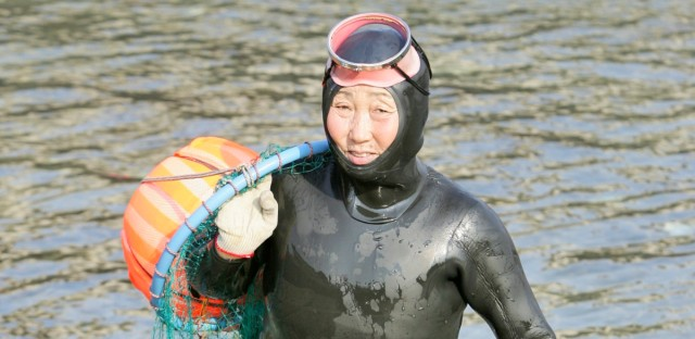 "Lee Myung-ja, a South Korean haenyeo, walks from the water after catching turban shells and abalones while diving in Jeju, south of Seoul, South Korea, Friday, Nov. 23, 2007. Lee, 63, is among a dwindling number of Korean women carrying on a centuries-old tradition. Known as haenyeo, which literally translates as ""sea women,"" they hold their breath up to two minutes as they pry abalone or gather seaweed from the ocean floor."