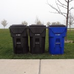 Chicago Recycling Bin