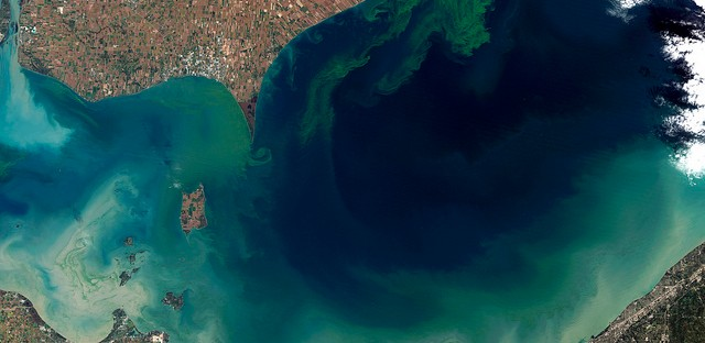 A satellite shot of Lake Erie at the end of the summer in 2011 shows layers of algal blooms swirling through the western end of the lake.
