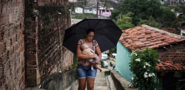 CDC Arrives in Brazil to Investigate Zika Outbreak