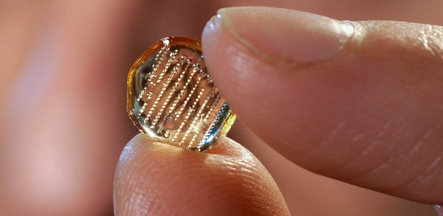 The microneedle patches developed at Georgia Institute of Technology's Laboratory for Drug Delivery each contain an array of needles less than a millimeter long.