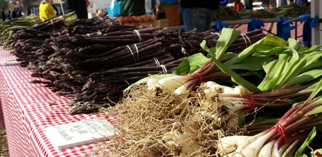Farmers markets in Chicago vary in offerings because of different missions
