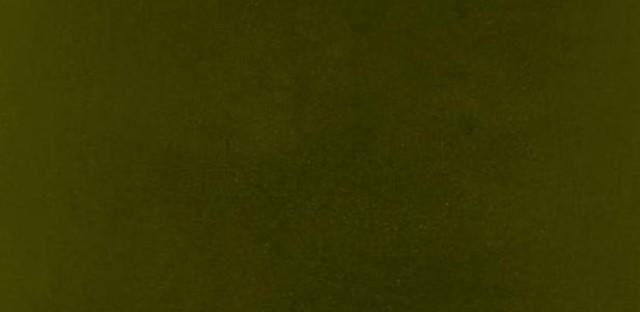 The cover of Kendrick Lamar's untitled unmastered. project.