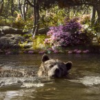 Mowgli and Baloo in The Jungle Book.