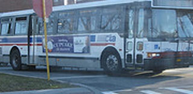 Snail bus route gets a facelift
