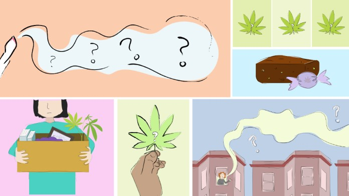 Your Pocket Guide To Legal Weed In Illinois