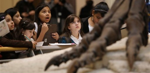 School children get a close-up look at the Tyrannosaurus rex skeleton known as Sue on display at Chicago's Field Museum Wednesday, May 12, 2010 in Chicago. The skeleton was being cleaned Wednesday in anticipation of her 10th anniversary at the museum.