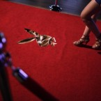 A young woman walks towards a stage to be photographed while applying for a job as a Playboy bunny during a casting in Monterrey August 7, 2013.