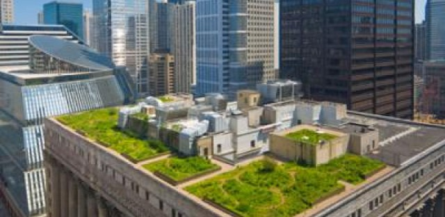 Chicago's City Hall was the first municipal building in the U.S. to feature a green roof.
