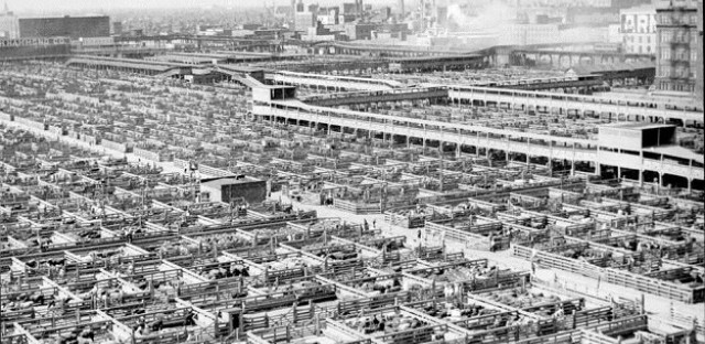 The Yards, 1947