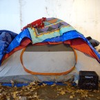 Wilson Avenue tent