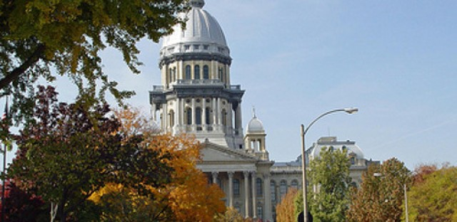 Rauner appoints new DCFS head from Florida