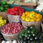Monsanto & GMOs