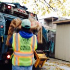 Is Chicago Breaking a State Yard Waste Law?