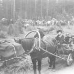 World War II's Baltic refugees