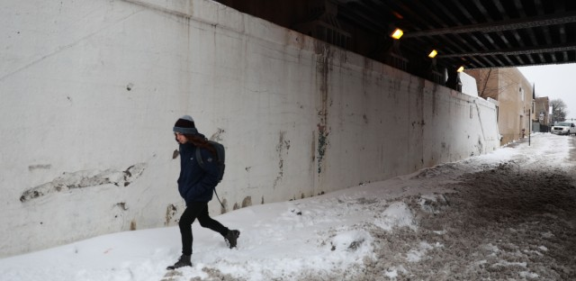 A resident trudges through snow in Humboldt Park.