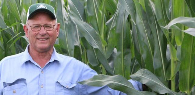 Majority of Illinois crops are genetically engineered