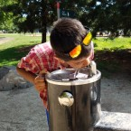 Lead in Drinking Fountains