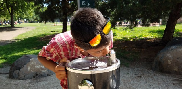 One fountain in Oz Park near the playground had lead levels more than 10 times higher than federal action levels in its first test of the year.