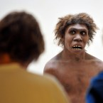 Neanderthals, represented here by a museum's reconstruction, had been living in Eurasia for 200,000 years when Homo sapiens first passed through, and the communities intermingled. The same genes that today play a role in allergies very likely fostered a quick response to local bacteria, viruses and other pathogens, scientists say.