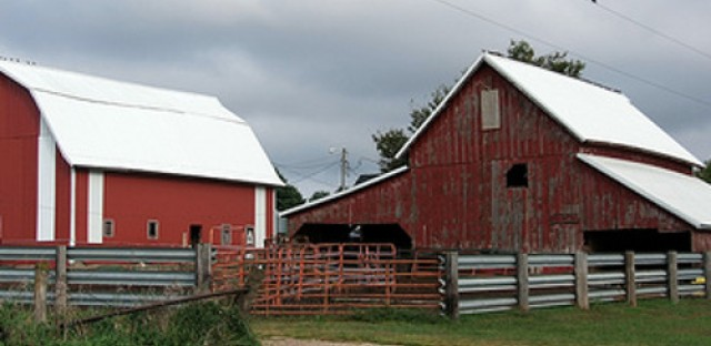Some farmers claim new food safety regulations could kill small farms