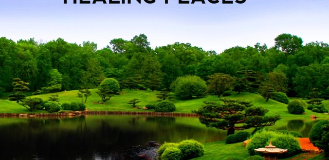 On Being : Esther Sternberg — The Science of Healing Places Image
