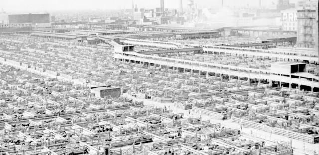 The Union Stockyards in 1941.