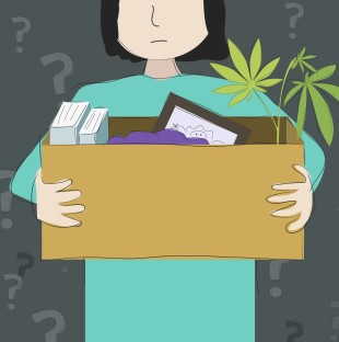 An illustration of a person holding a cardboard box as if they had just been asked to pack up their desk. The box contains books, a picture frame and a marijuana plant.