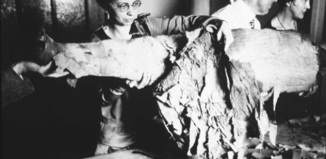 Date/individual unknown. Bad mummy tech: An unidentified employee unwraps one of the Oriental Institute's mummies in approximately 1910