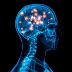 Small pulses of electricity to the brain have an effect on memory, new research shows.