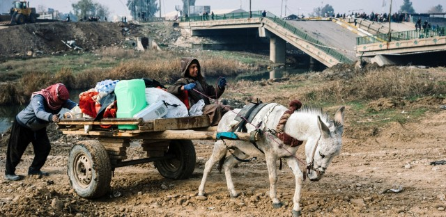 An Iraqi man guides a donkey-drawn cart at a makeshift river crossing next to a bridge destroyed by fighting between the Iraqi army and Islamic State in Mosul. The Tigris River divides the city, with the army retaking the east, but ISIS still holding the west.
