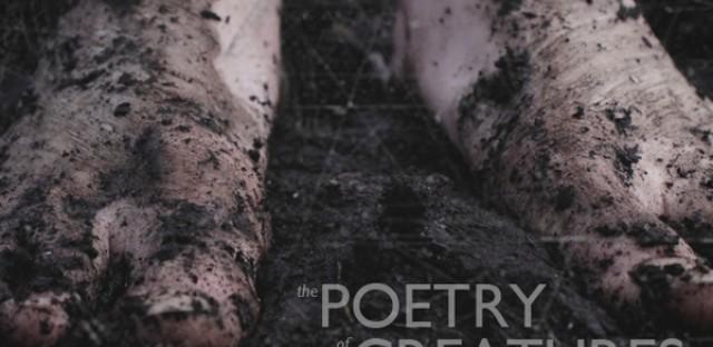 On Being : [Unedited] Ellen Davis with Krista Tippett Image