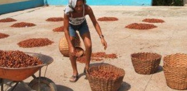 Chocolate prices on the rise amidst demand for fair working conditions