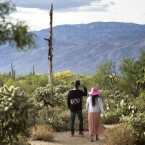 A couple walk along the Cactus Forest Trail in Saguaro National Park in Tucson, Ariz., last May.