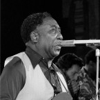 blues musician Muddy Waters performs at New York's Palladium Theater. The city of Chicago plans to dedicate nine-story mural to the blues legend on Thursday, June 8, 2017, before the city's annual blues festival this weekend. Waters is known as the father or king of Blues music in Chicago. He died in 1983 outside Chicago at age 70.