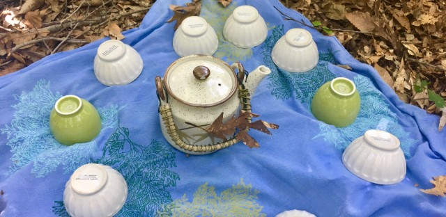 The forest bathing experience at The Morton Arboretum includes a tea ceremony.