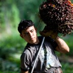 A man collects the harvested fruits of the African palm tree to load in his horse-drawn cart on the plantation in La Confianza, Honduras, a city developed from land seized by small-scale farmers from one of Honduras' richest men, on May 7, 2012.