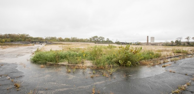A photo of the lot where Brach's Candy factory used to be. It is now empty, with weeds growing.