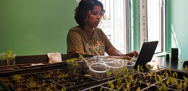 A student at Pedro Albizu Campos High School studies urban agriculture