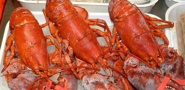 Lobster on the menu this month in Chicago